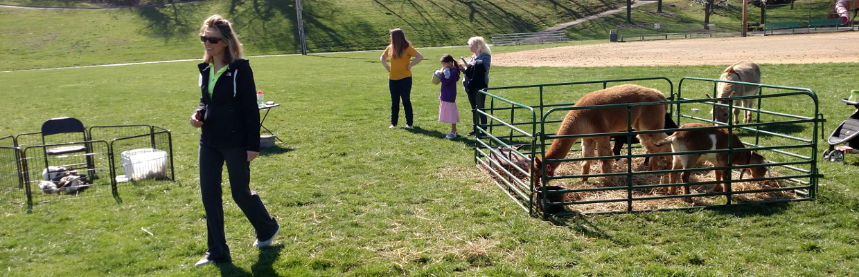 Animal rentals for Easter programs