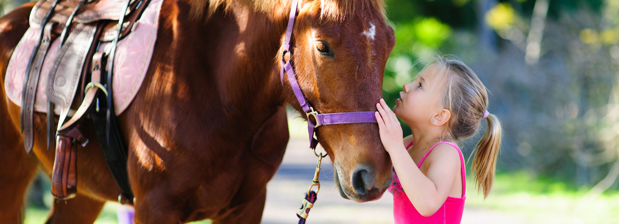 Pony Rides in Lexington, Louisville and Eastern Kentucky.