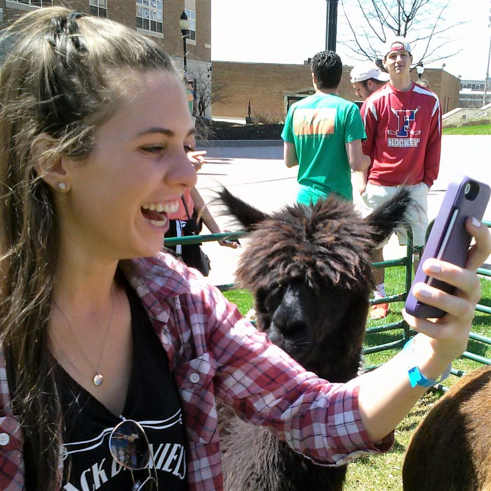 Rent A Petting Zoo For Your College Or University