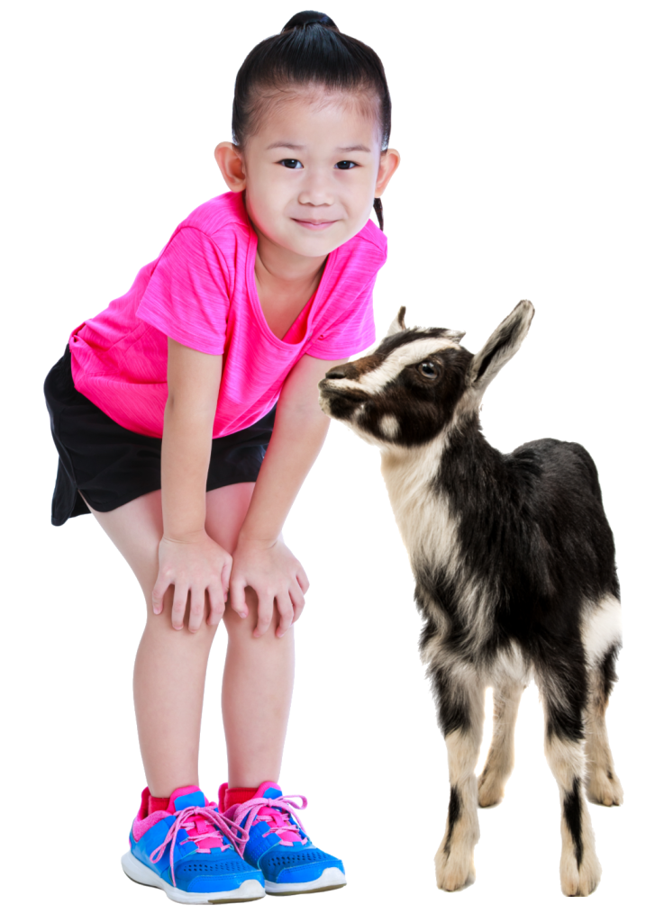 Travelling petting zoos that visit schools in cincinnati, lexington, dayton, louisville and northern kentucky.