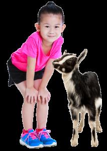 Travelling petting zoos that visit schools in lexington, louisville, cincinnati, dayton and northern kentucky.