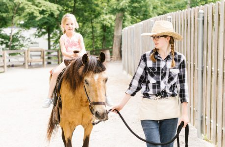 Kings Island Pony Rides and Petting Zoo